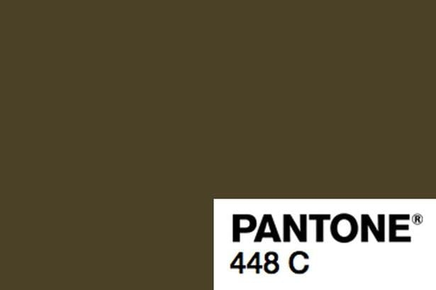 Pantoe 448 -worlds ugliest colour